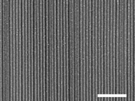New Trick Produces Whole Wafers of Perfectly Aligned Nanowires | Amazing Science | Scoop.it