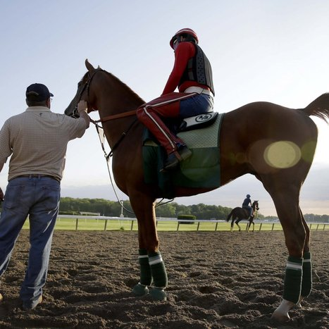 California Chrome's Triple Crown 2014 Odds in Pursuit of Secretariat, Affirmed | Horse Racing News | Scoop.it