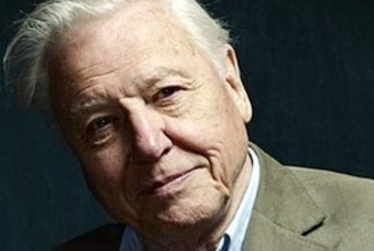 Attenborough: endless growth 'lunacy' | real utopias | Scoop.it