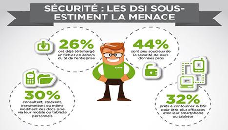 Les DSI face à la rébellion des salariés connectés | infographie | Scoop.it