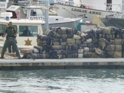 Square Grouper: Harbor Patrol Finds Nearly 8,000 Pounds Of Marijuana Floating Off California Coast | The Billy Pulpit | Scoop.it