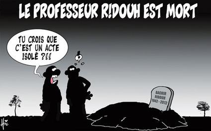 Exposition commune de caricaturistes algériens et français à Paris - Actualité - El Watan | Image et presse | Scoop.it