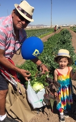 Yuma: An Arizona Surprise With Something for Everyone | CALS in the News | Scoop.it