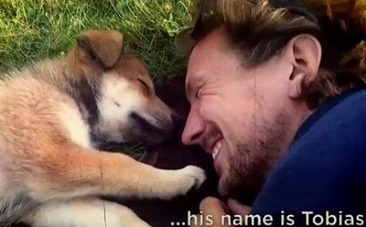Daily Cute: A Puppy Named Tobias Can't Hold Back His Joy | Nature Animals humankind | Scoop.it