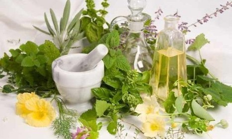 "John Innes Centre Mention: ""Growing"" Medicines in Plants Requires New Regulations | | BIOSCIENCE NEWS | Scoop.it"