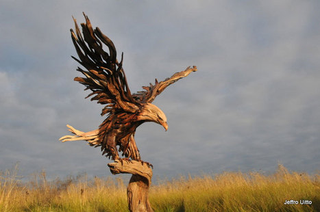 Driftwood Sculpture an Addition to the Innovative Eco Art | Best Contemporary Art | Scoop.it