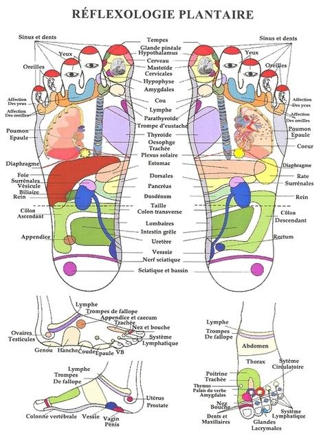 Réflexologie plantaire, pour soulager la douleur c'est le pied | Réflexologie | Scoop.it