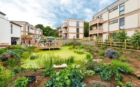 LILAC: A Model for Truly Affordable Green Cohousing | Local community (UK) | Scoop.it