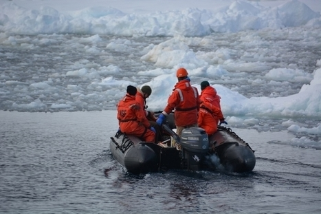 Climate Change: Melting Antarctic Glaciers Impact the Food Chain | Climate change challenges | Scoop.it