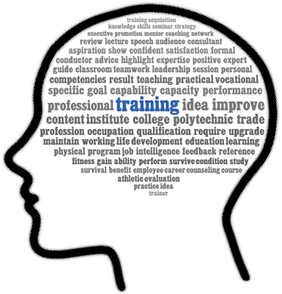Learning Management Systems: Creating sustainable training support for Corporate Learners | Moderating and Facilitating elearning | Scoop.it