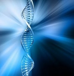 97 Percent of Our DNA Has a Higher Purpose And Is Not 'Junk' As Labeled By Scientists | Wake Up World | multifarious | Scoop.it