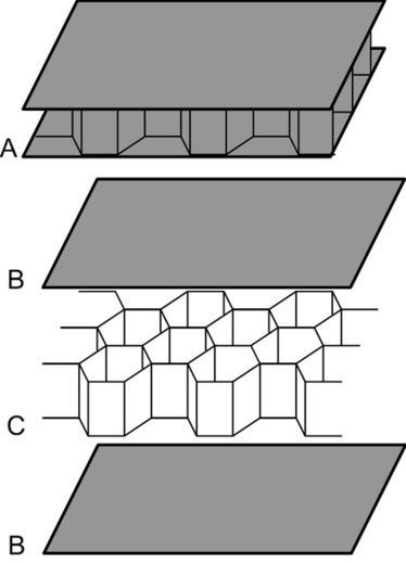 Nid d'abeilles (structure) | Wikiwand | Materiaux nouveautés | Scoop.it