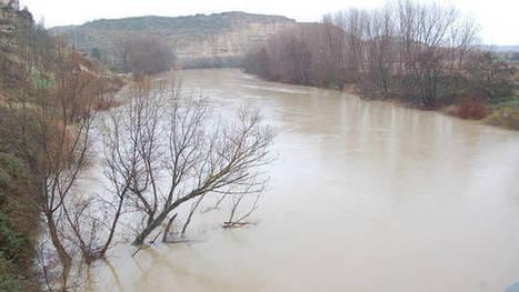 La plataforma Canal No insiste en el rechazo al proyecto de Mendavia | Ordenación del Territorio | Scoop.it