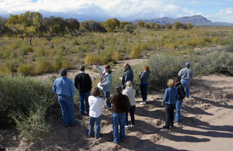 Restoration of Rio Grande flood plain underway - Albuquerque Journal | Fish Habitat | Scoop.it