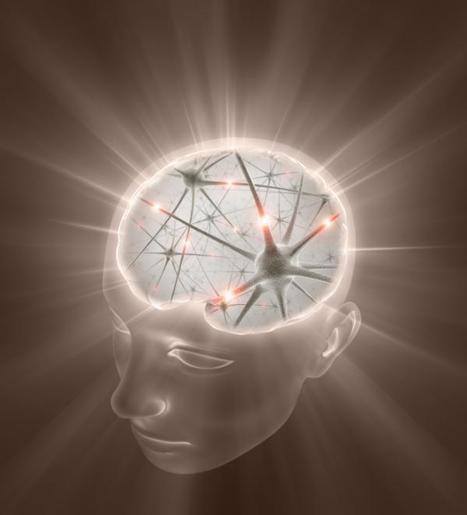 Timing & Sensory Systems-How the Brain Learns | Learning, Brain & Cognitive Fitness | Scoop.it