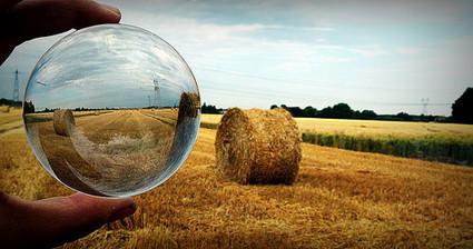 Cultive-t-on et mangeons-nous des OGM en France ? | Farfeleusement Vôtre | Scoop.it