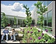 Biophilic Design Self Conscious Relationship of Green Building   Normandie Online   Biophilic Design   Scoop.it
