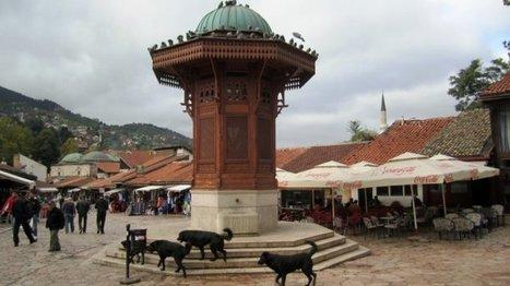 La Bosnie-Herzégovine au delà des divisions (partie 1) | Curieuse veilleuse | Scoop.it