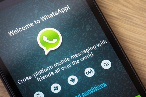 WhatsApp hits 800m active users, could top a billion by year's end | Social Media Useful Info | Scoop.it