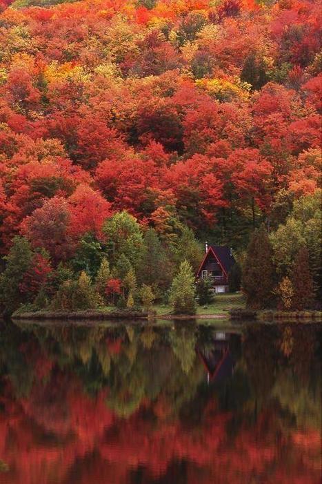 Twitter / _Voyages_: Autumn Lake, Québec, Canada ... | Hobbies | Scoop.it