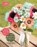 Catalogue Printemps / Eté #StampinUp! est arrivée avec la SAB ! | Loisirs Créatifs manuels | Scoop.it