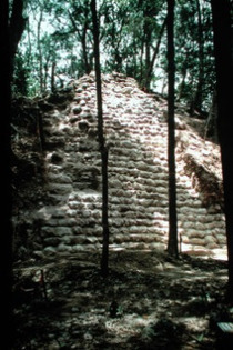 Ancient Maya Center Saved from Destruction | Belize in Social Media | Scoop.it