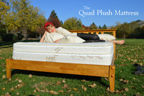 The Quail Plush Mattress | Mattresses | Scoop.it