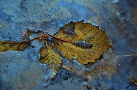 Mineral Deposits Photo by Maria Vanesa Acuto — National Geographic Your Shot   Our Earth's Geology, Minerals & Gemstones   Scoop.it