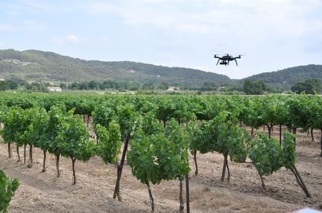 Carbon Bee, lauréat du prix French Tech Culture | Drone | Scoop.it