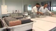 Des chercheurs caennais recyclent des coquillages en matériaux de construction - France 3 Basse-Normandie   Matériaux Produits Techniques   Scoop.it