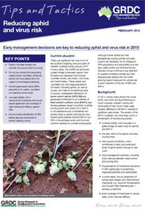 BWYV: Reducing aphid and virus risk in 2015   Australia's Research-based Learning Network   Beet western yellows virus   Scoop.it