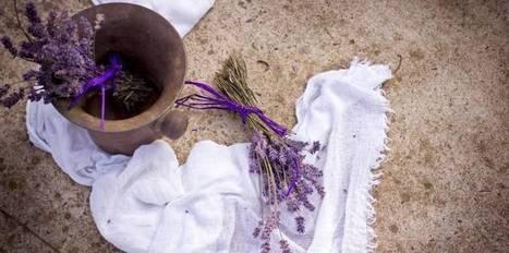 Eaux florales : elles ont tout bon contre les problèmes de peau | La Cabane aux Arômes | Scoop.it