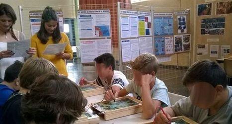 Les lycéens mirandais, professeurs d'un jour | Lycée Alain-Fournier, Mirande | Scoop.it