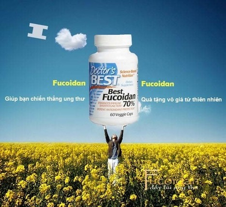 Fucoidan chữa ung thư gan   Thuc pham dinh duong   Scoop.it