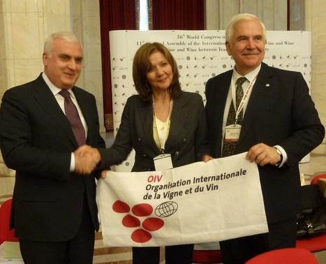 OIV : 36ème Congrès Mondial de la Vigne et du Vin. Rapport statistique et résumé des 21 résolutions adoptées. | Agriculture en Gironde | Scoop.it