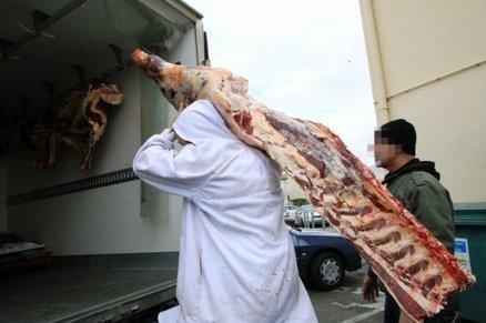 Trafic de viande de cheval : 21 personnes interpellées dans le sud dont l'organisateur présumé à Narbonne | Cheval et Nature | Scoop.it