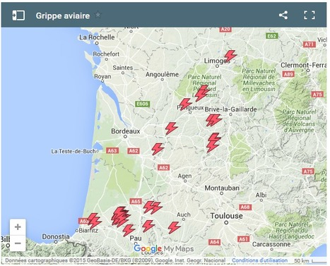 Grippe aviaire : 15 nouveaux foyers dans le Sud-Ouest | Toxique, soyons vigilant ! | Scoop.it