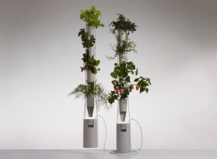 Growing Vertically with Windowfarms | green | Scoop.it
