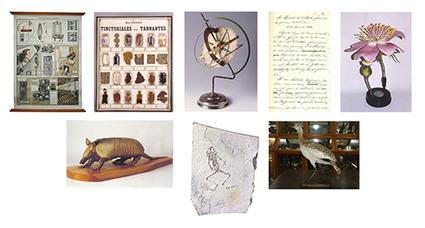 Exposición sobre el patrimonio del IES Vega del Turia en el Museo Prov. de Teruel - | Educadores innovadores y aulas con memoria | Scoop.it