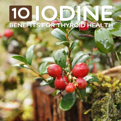 10 Benefits of Iodine for Your Thyroid & Overall Health | Writer, Book Reviewer, Researcher, Sunday School Teacher | Scoop.it