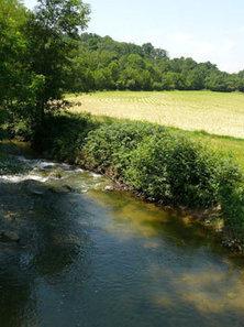 Directive Nitrate 5 : donnez votre opinion à l'Etat - Chambres d'Agriculture de Bretagne | Agriculture d'Ille-et-Vilaine | Scoop.it