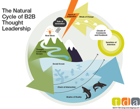 The Natural Cycle of B2B Thought Leadership [Infographic] :: TDA ... | Cogitation Supremacy | Scoop.it