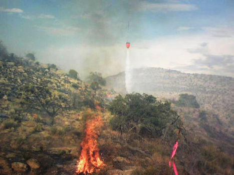 Treating the landscape with fire | Arizona Daily Star | CALS in the News | Scoop.it