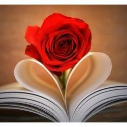 Top Romance Books 2012 | Hot Reading Lists & the Best Books from So Simply Stephanie | Scoop.it