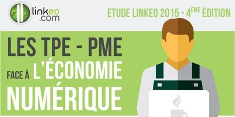 Les entreprises françaises et le web : les plus et les moins en 2 infographies | Webmarketing | Scoop.it