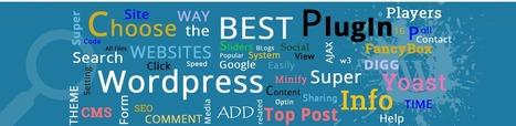 How to pick best plugin for your WordPress site | CGColors | Web Design & Development Updates | Scoop.it