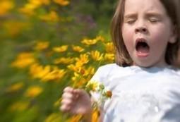Pollen Allergy Symptoms | Allergy Treatment | Scoop.it