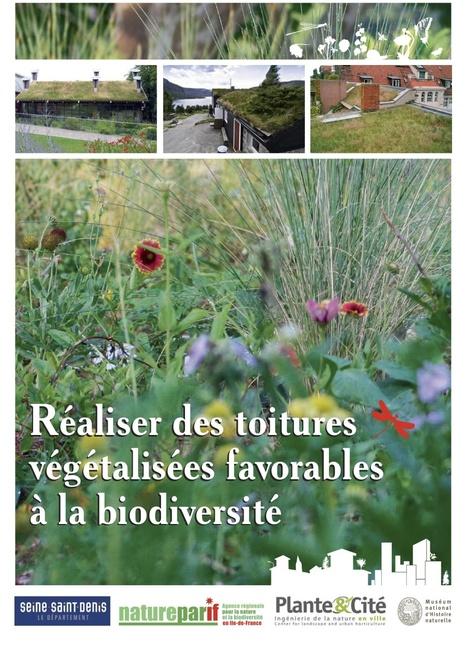 Réaliser des toitures végétalisées favorables à la biodiversité | Toit végétalisés et agriculture | Scoop.it