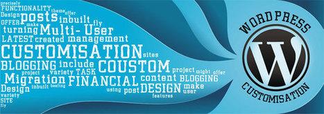 Wordpress Customization | TWA The Web Artists: Web Solutions | Scoop.it
