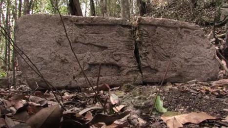 Une imposante cité maya découverte au Mexique | A-arts-s s s (animaux, nature, écologie, peinture huile) | Scoop.it
